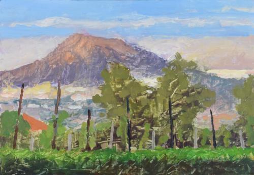 Vesuvio from Palma Campania